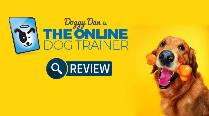 Doggy-Dans-The-Online-Dog-Trainer-review-2018