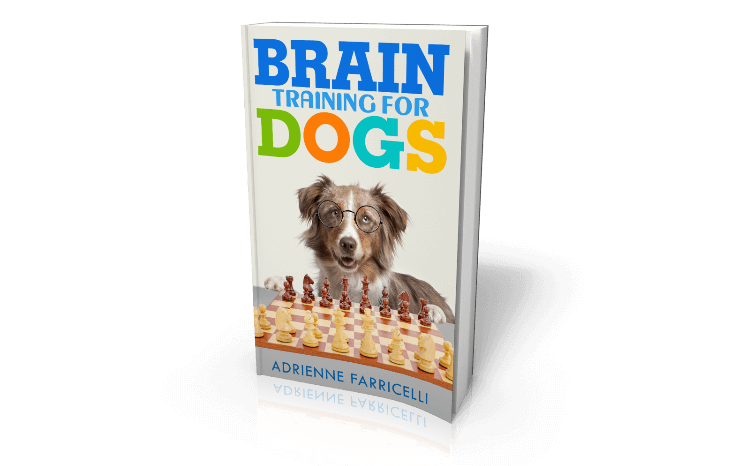 Obedience Training Commands Brain Training 4 Dogs  Quit Working