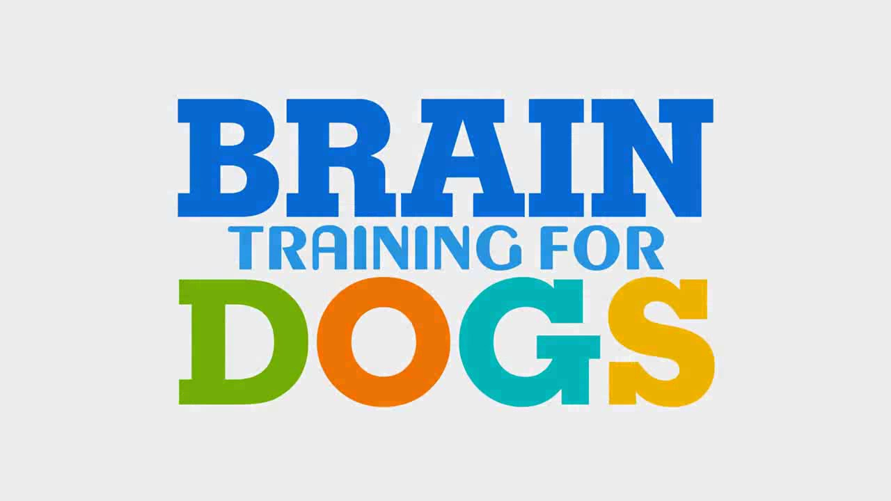 Brain Training 4 Dogs Obedience Training Commands Official Website