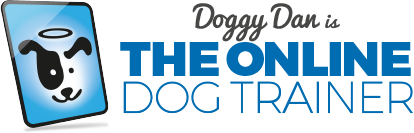 latest review to the online dog trainer 2019