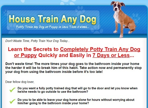 House train any dog homepage