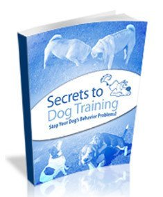 secrets to dog training e book