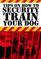 security train your dog