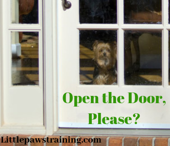 closing the door method to calm down dogs