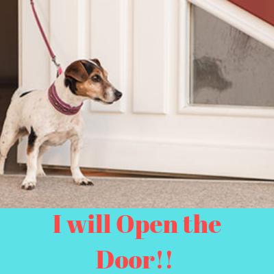 Door Leash Method to Keep your dog calm