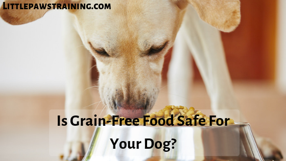Is Grain-Free Food Safe For your Dog