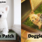 DoggieLawn vs Fresh Patch: Which is the Better Indoor Potty?