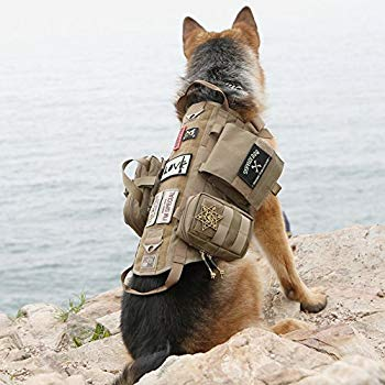 Best Tactical Dog Vests and Harnesses 2019