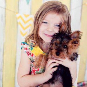 yorkies behavior with kids