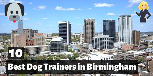10 Best Dog Trainers in birmingham, alabama