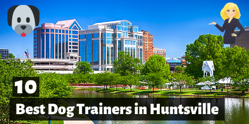 10 Best Dog Trainers in Huntsville, Alabama