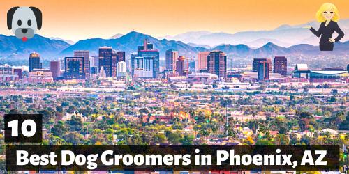 10 Best Dog Groomers in Phoenix, Arizona