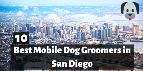 10 Best Mobile Dog Groomers in San Diego, CA