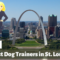 The 12 Best Dog Trainers in St. Louis, Missouri