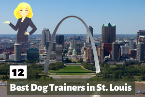 12 Best Dog Trainers in St. Louis