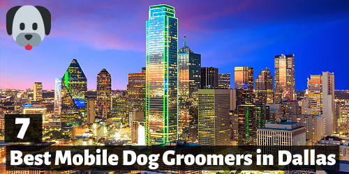 7 Best mobile dog groomers in dallas, TX