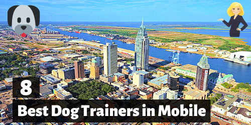 8 Best Dog Trainers in Mobile, Alabama