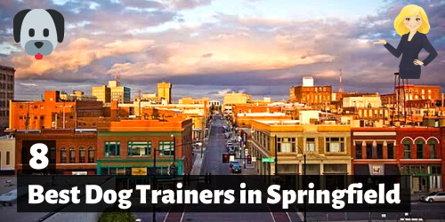 8 Best Dog Trainers in Springfield, Missouri