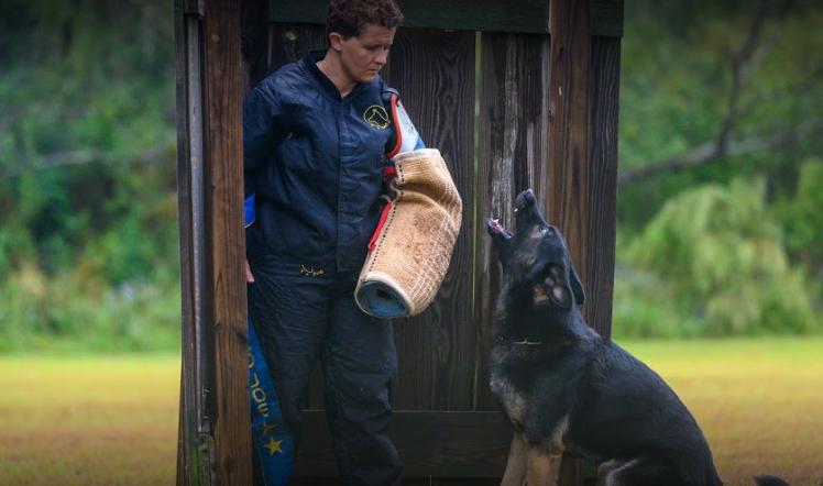 Central Alabama Schutzhund birmingham al