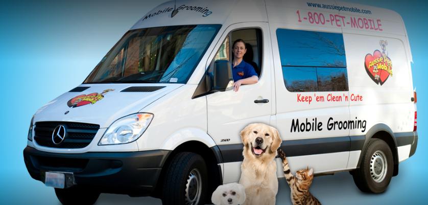 aussie pet mobile grooming