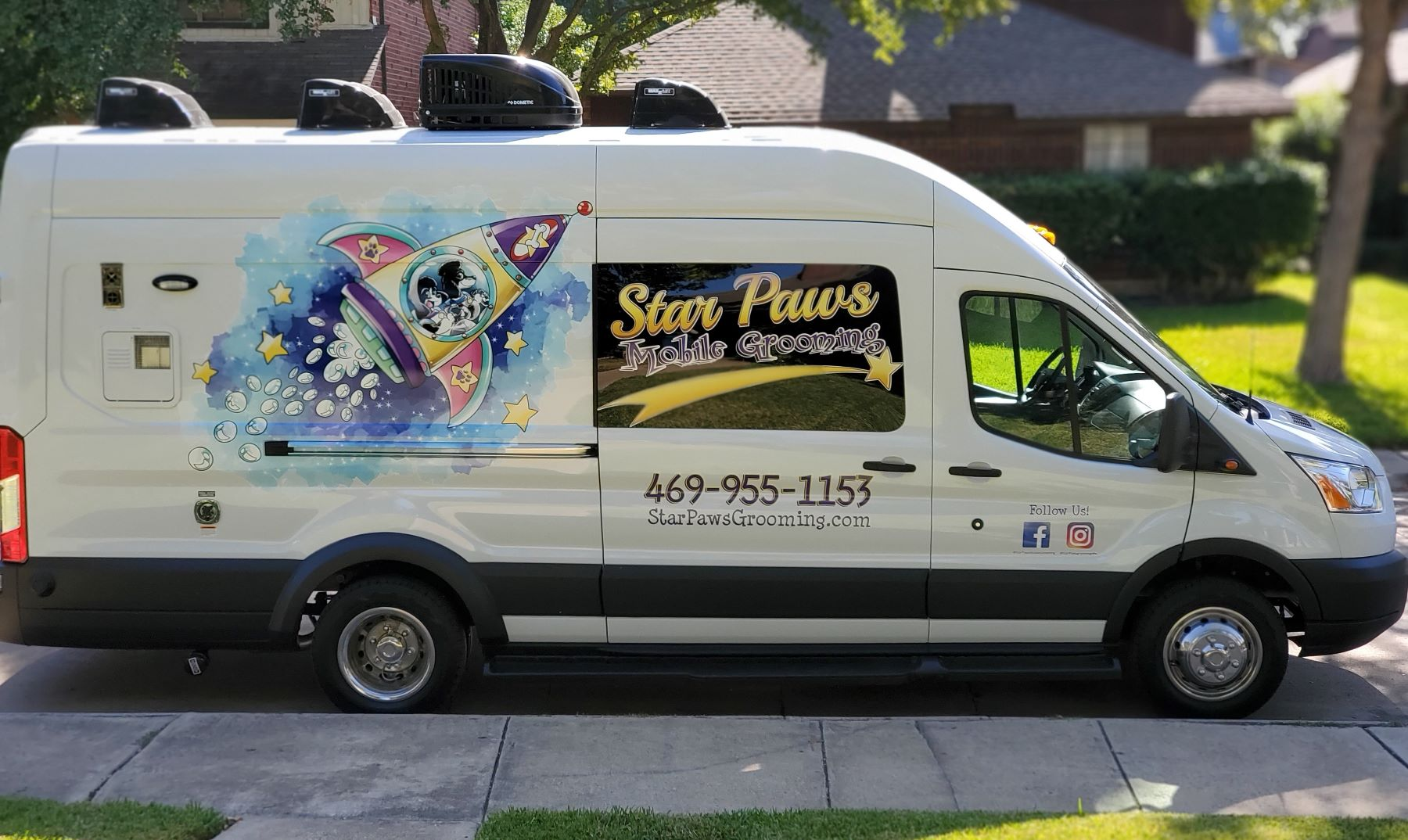 star paws pet grooming dallas